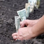 Посадка денег