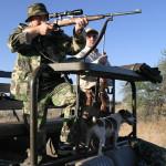 Как можно получить охотничий билет