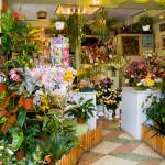 Как открыть цветочный магазин с нуля