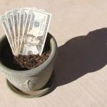 Деньги в цветочном горшке